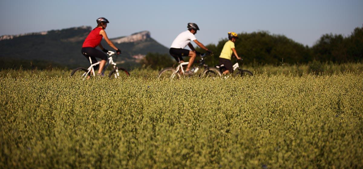 Rutas en familia en bicicleta en Montaña Alavesa