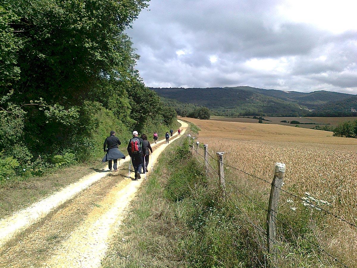 Nordic Walking en Montaña Alavesa