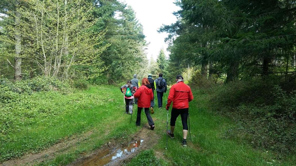 Arabako Mendialdeko Nordic Walking